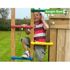 Jungle Gym 1 Step Module